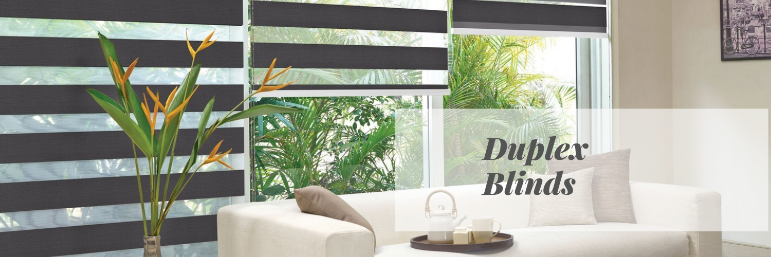 Duplex Window Blinds Chennai
